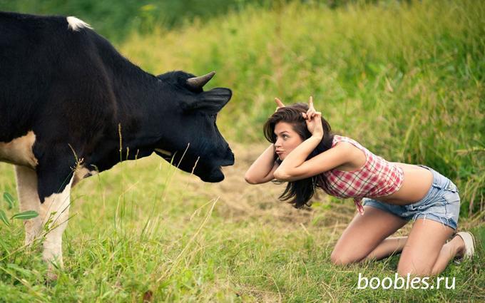 женщина и корова фото