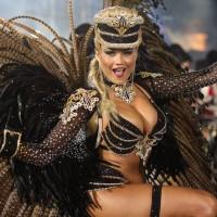 Бразильский карнавал (фото)