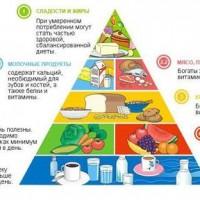 Основы рационального питания человека